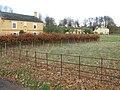 Houses on the Waldershare estate - geograph.org.uk - 1597637.jpg