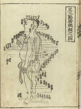 Traditional Chinese medicine - Acupuncture chart from Hua Shou (fl. 1340s, Yuan Dynasty). This image from Shi si jing fa hui (Expression of the Fourteen Meridians). (Tokyo: Suharaya Heisuke kanko, Kyoho gan 1716).