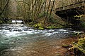 Humbug Creek at Elsie, OR.jpg