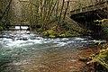 Humbug Creek at Elsie, OR.jpg