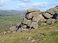 Hunter's Tor - geograph.org.uk - 161811.jpg