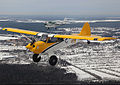 Husky-a1-c-108.jpg