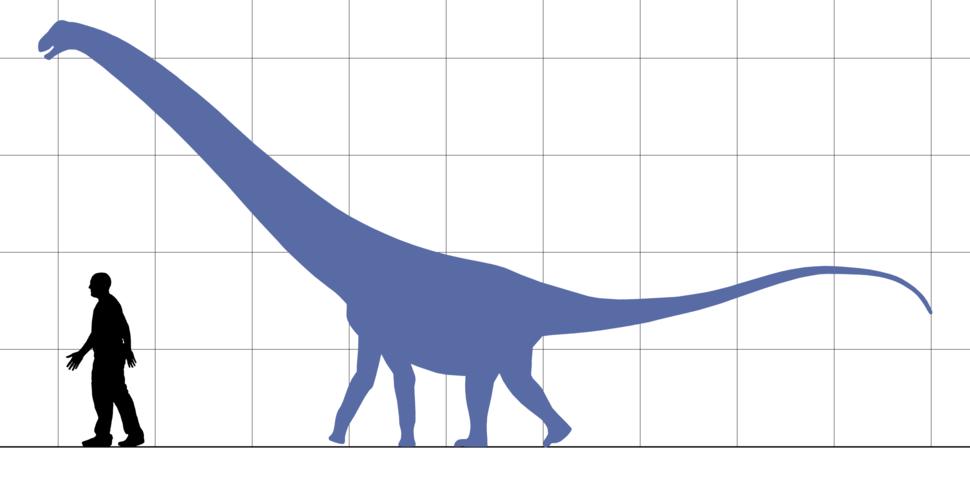 Hypselosaurus scale