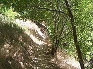 Hyrum-Lake-Park-Trail