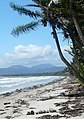 I've got a luvverly bunch of coconuts^ Four Mile beach after some rough weather. - panoramio.jpg