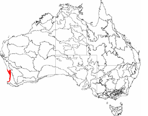 Swan Coastal Plain - The IBRA regions, with Swan Coastal Plain in red