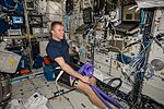 ISS-47 Tim Peake uses hardware for the Vascular Echo experiment in the Columbus module.jpg