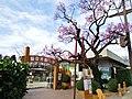 Iida City Zoo.jpg