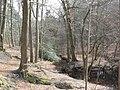Im Reichswald.jpg