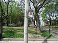 Images taken out a west facing window of TTC bus traveling southbound on Sherbourne, 2015 05 12 (80).JPG - panoramio.jpg
