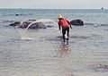In Thailand a lot of men fishing with nets.jpg