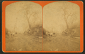 In the park at Vermillion, Dakota, from Robert N. Dennis collection of stereoscopic views.png