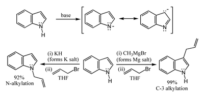 Formation and reactions of the indole anion