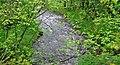 Island brook flowing at heavy rain spring 2013 - panoramio.jpg