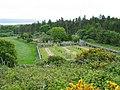 Isle of Gigha cemetery. - geograph.org.uk - 179519.jpg