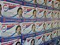 Izbori 2012 - plakati SDS (1).JPG