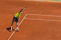 JM Del Potro - Roland-Garros 2012-IMG 3482.jpg