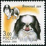Japanese-Chin-Canis-lupus-familiaris.jpg