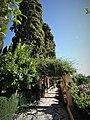 Jardín Carmen Cipreses.jpg
