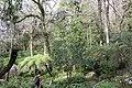 Jardin Feteira Rainha Sintra 4.jpg