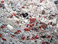 Jasper-quartz pebble conglomerate (Lorrain Formation, Paleoproterozoic, ~2.3 Ga; Ottertail Lake Northeast roadcut, near Bruce Mines, Ontario, Canada) 79 (32766369107).jpg