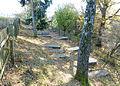 Jewish cemetery Dankelshausen.jpg
