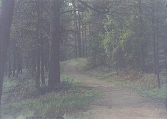 Ruidoso, New Mexico - Image: Jogging 07 03 2008 11;07;19PM