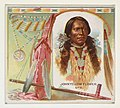 John Yellow Flower, Ute, from the American Indian Chiefs series (N36) for Allen & Ginter Cigarettes MET DP838917.jpg