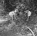 Jongens op zoek naar graven op het terrein van de voormalige Jodensavanna., Bestanddeelnr 252-6465.jpg