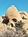 Joshua Tree Nationalpark Skull Rock IMG 20180413 161108.jpg