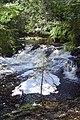 Jumbo Falls - panoramio.jpg
