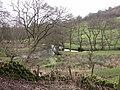 Junction of streams - geograph.org.uk - 311472.jpg
