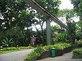 Jurong BirdPark 118.JPG