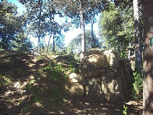 Cerro Quiac - Retaining wall of the main platform in the west group