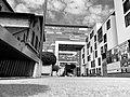 Köln Rheinauhafen Kranhäuser und Wohnwerft schwarzweiss.jpg