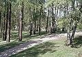 Kaivopuisto - XLVIII-1122 - hkm.HKMS000005-km0000m3f2.jpg