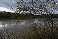 Kuban River in Ubezhenskaya.jpg