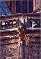 Kutná Hora - St Barbora Cathedral - Gargoyle.jpg