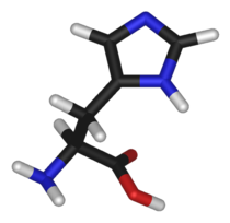 L-histidine-3D-sticks.png