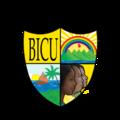 LOGO OFICIAL BICU.png