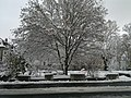 La Chaux-de-Fonds (15812407579).jpg