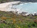 La plage de sable de Port-Morvan.jpg