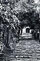 La scalinata di San Gottardo - panoramio.jpg