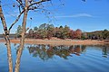 Lake Allatoona November 2019 2.jpg