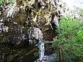 Lake Cave @ Margaret River (4450557878).jpg
