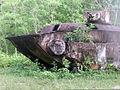Landing Vehicle Tracked (Armored)(Mark 1) rusting on Peleliu 2001.JPEG