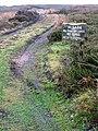 Landrover Track Over Gisborough Moor - geograph.org.uk - 299404.jpg
