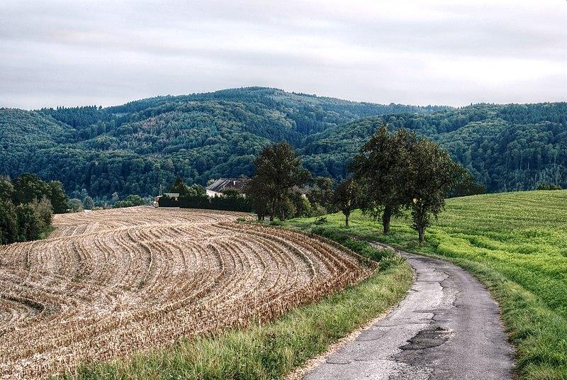File:Landscape Puchenau HDR 2 (DFdB).jpg
