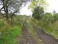Lane, Barr O Farrow - geograph.org.uk - 1504535.jpg