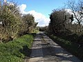 Lane past Tregray Farm - geograph.org.uk - 732758.jpg